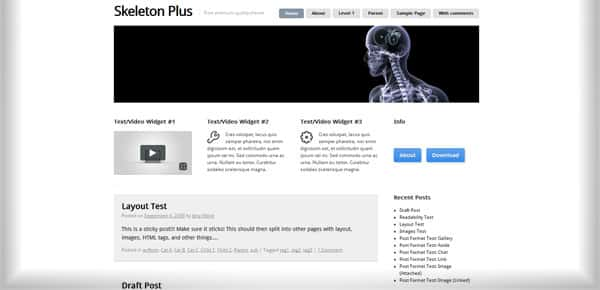 Skeleton Plus - Theme WordPress Gratuit Minimaliste