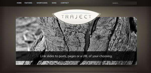 Theme WordPress Business - Traject