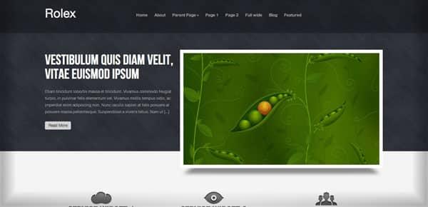Thème WordPress Gratuit - Rolex