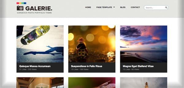 Thème WordPress Grille - Galerie