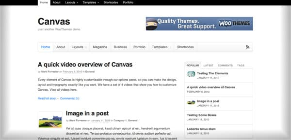 Meilleur theme WordPress - Canvas v5