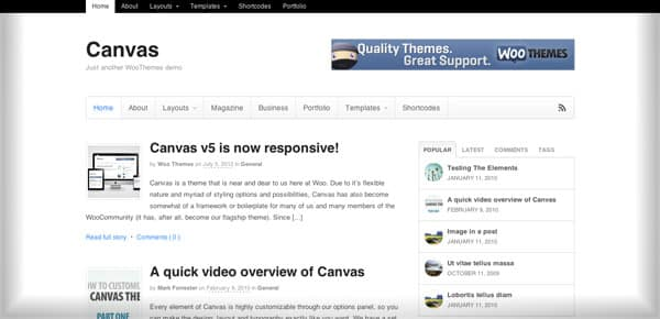 Theme WooThemes - Canvas