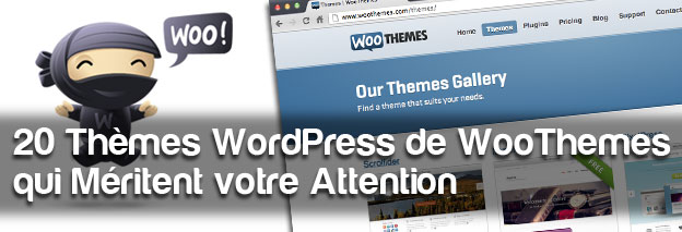 Theme WooThemes
