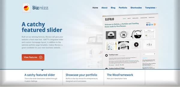 Theme WordPress - Biznizz