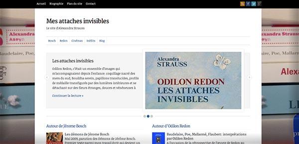 Theme WordPress - Alexandre Strauss