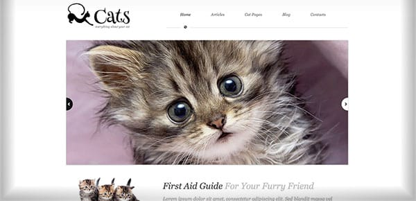 Theme WordPress - Cats