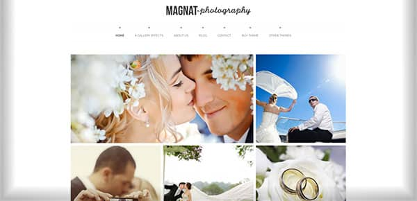 Theme WordPress - Magnat