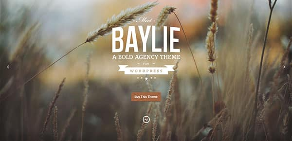 Template WordPress - Baylie