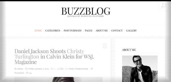 Thème WordPress - Buzzblog