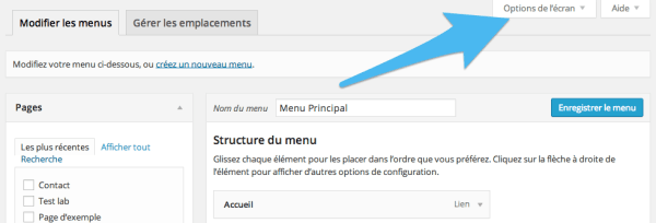 Options menus WordPress