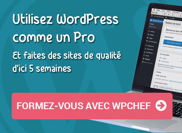 Formation WordPress pro