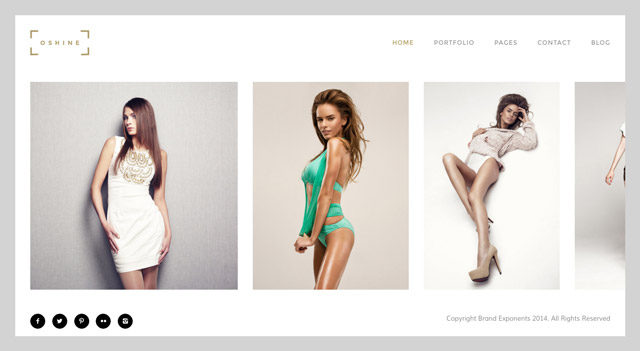 Oshine : un thème WordPress photo