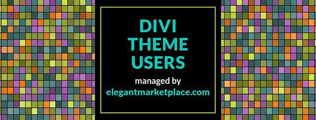 La communauté Divi Theme Users