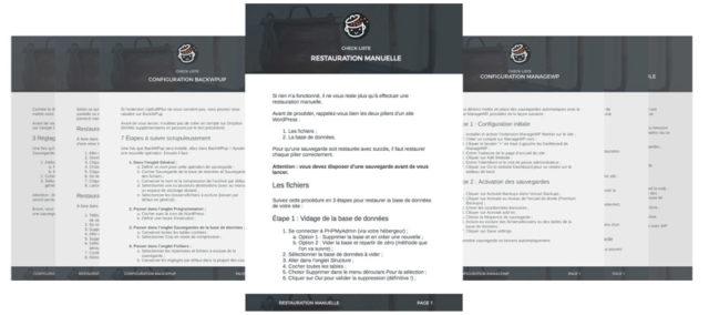 Checklistes sauvegarde