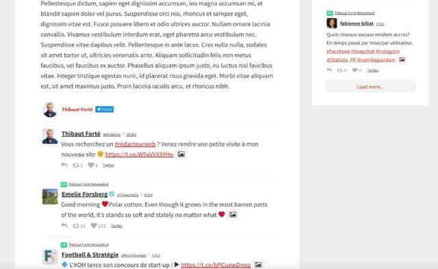Intégration de l'extension Custom Twitter Feed dans un article