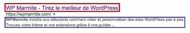 Les balises SEO sont primordiales pour un site WordPress professionnel